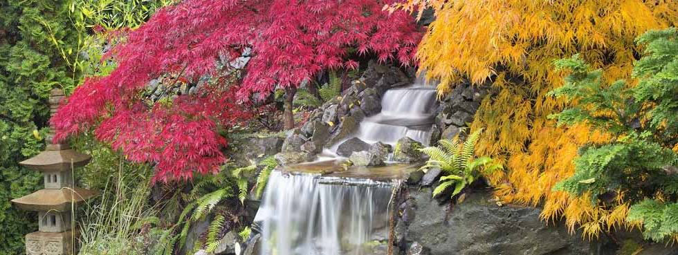 Tacoma sprinkler systems water features